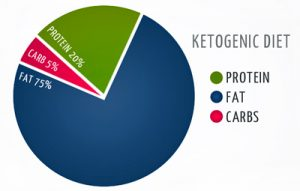 Optimal calorie structure for the ketogenic diet